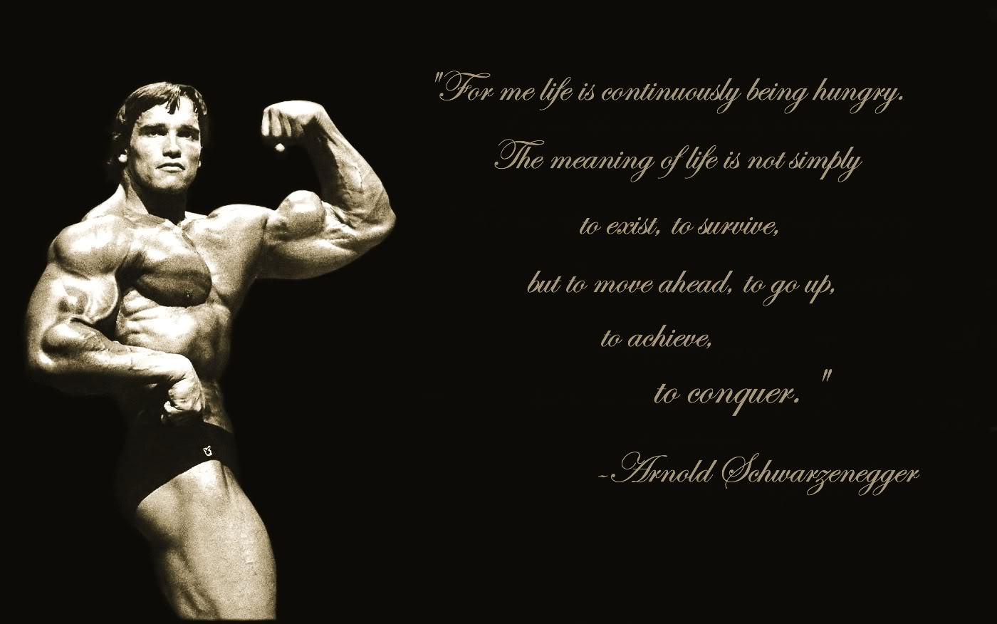 Wallpapers Backgrounds   Arnold wallpaper Bodybuilding Forums 1400x876