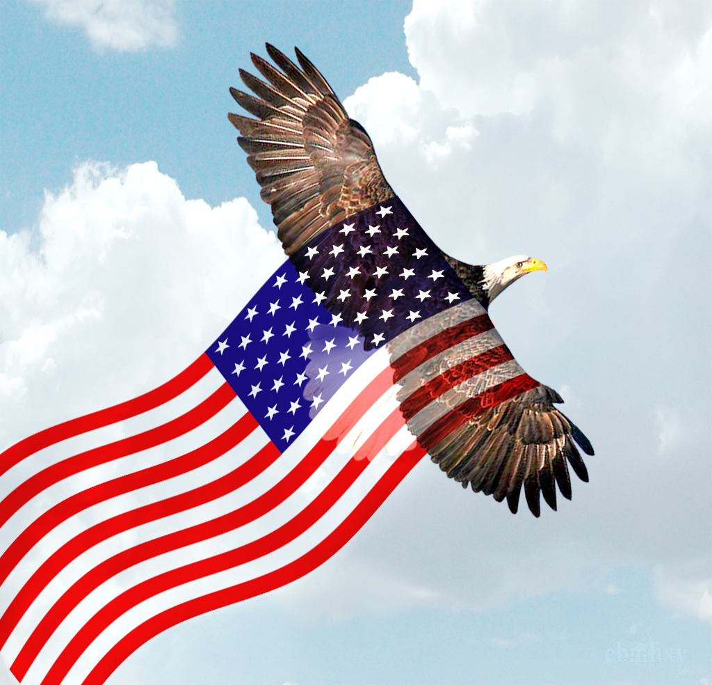 [44+] Bald Eagle American Flag Wallpaper On WallpaperSafari
