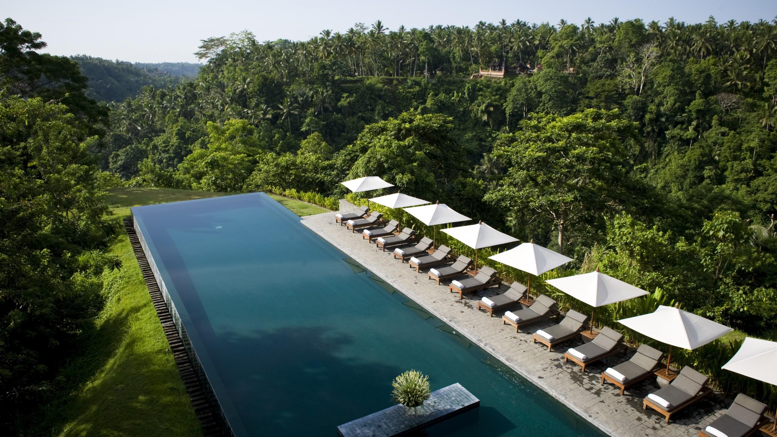 Wallpaper Alila Ubud Bali Indonesia The best hotel pools 2017 2560x1440