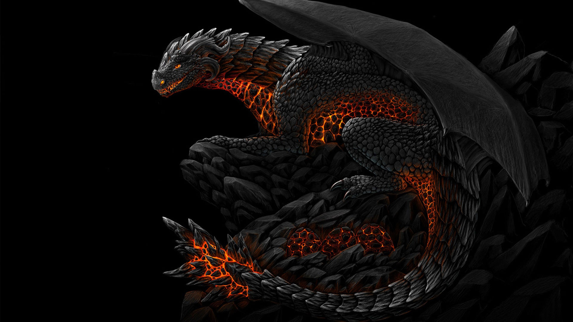 Dragon Wallpapers Best Wallpapers 1920x1080
