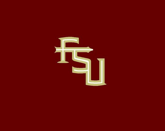 fsu logo fsu logo 540x429