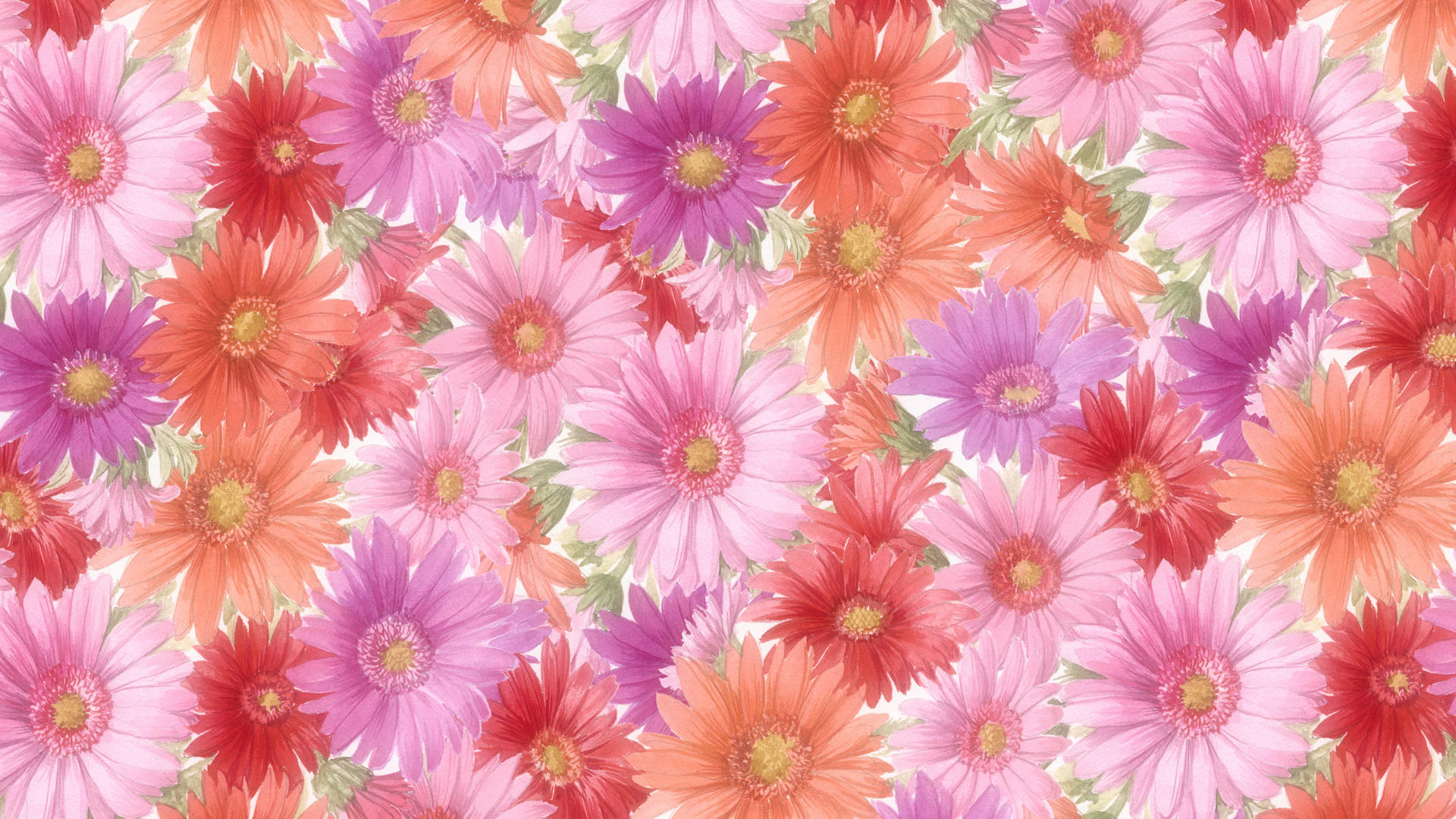 Flowers Background Hd Pink