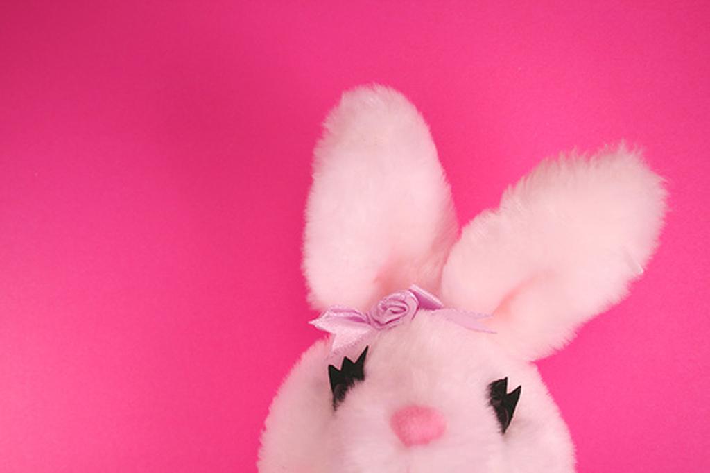 Free Download Pink Rabbit 1024x682 For Your Desktop Mobile Tablet Explore 46 Pink Bunny Wallpaper Baby Bunny Wallpaper Cute Bunnies Wallpaper Hd Bunny Wallpaper