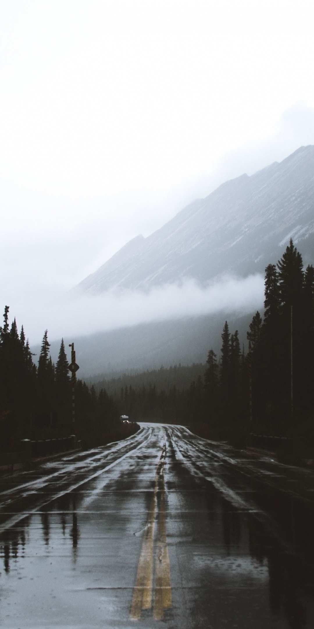 Alberta Canada road rainy day iPhone Wallpaper Iphone wallpaper
