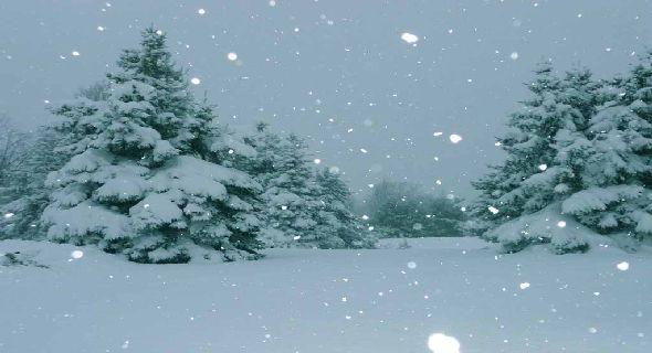 httpwwwsmscscomphotobeautiful snow scenery wallpaper19html 590x320
