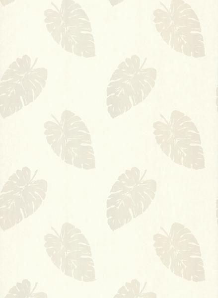 Sample of Paume Banana Leaf Wallpaper in Champagne by Brewster Home Fa 439x600