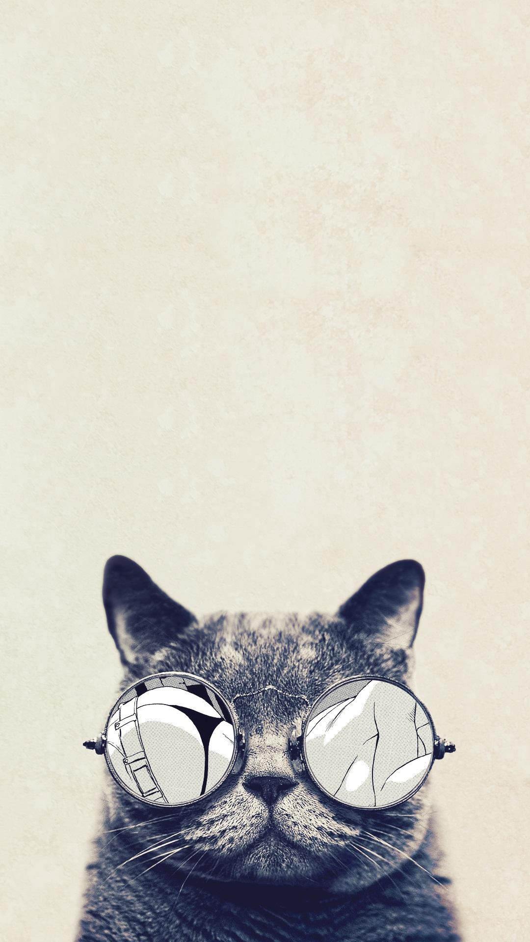 iPhone 6s Cool Cat Wallpaper HD iPhones Wallpapers 1080x1920