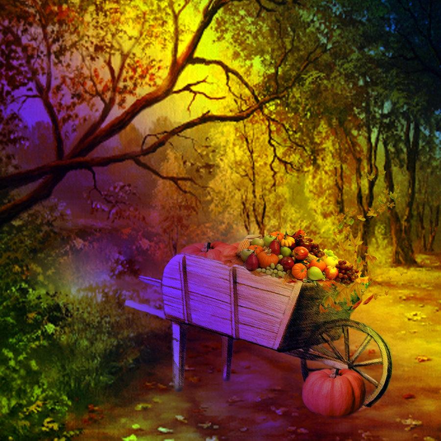 Autumn Scenes Wallpaper   wwwwallpapers in hdcom 900x900