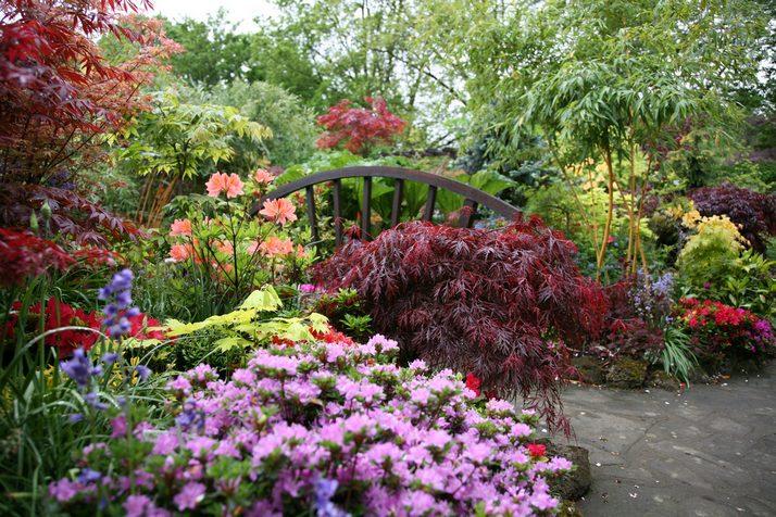 Free Beautiful English Garden Wallpaper