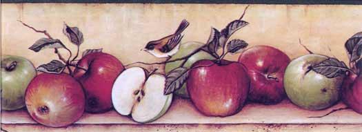Apple and Bird Wallpaper Border Wallpaper Border DC2111 525x191