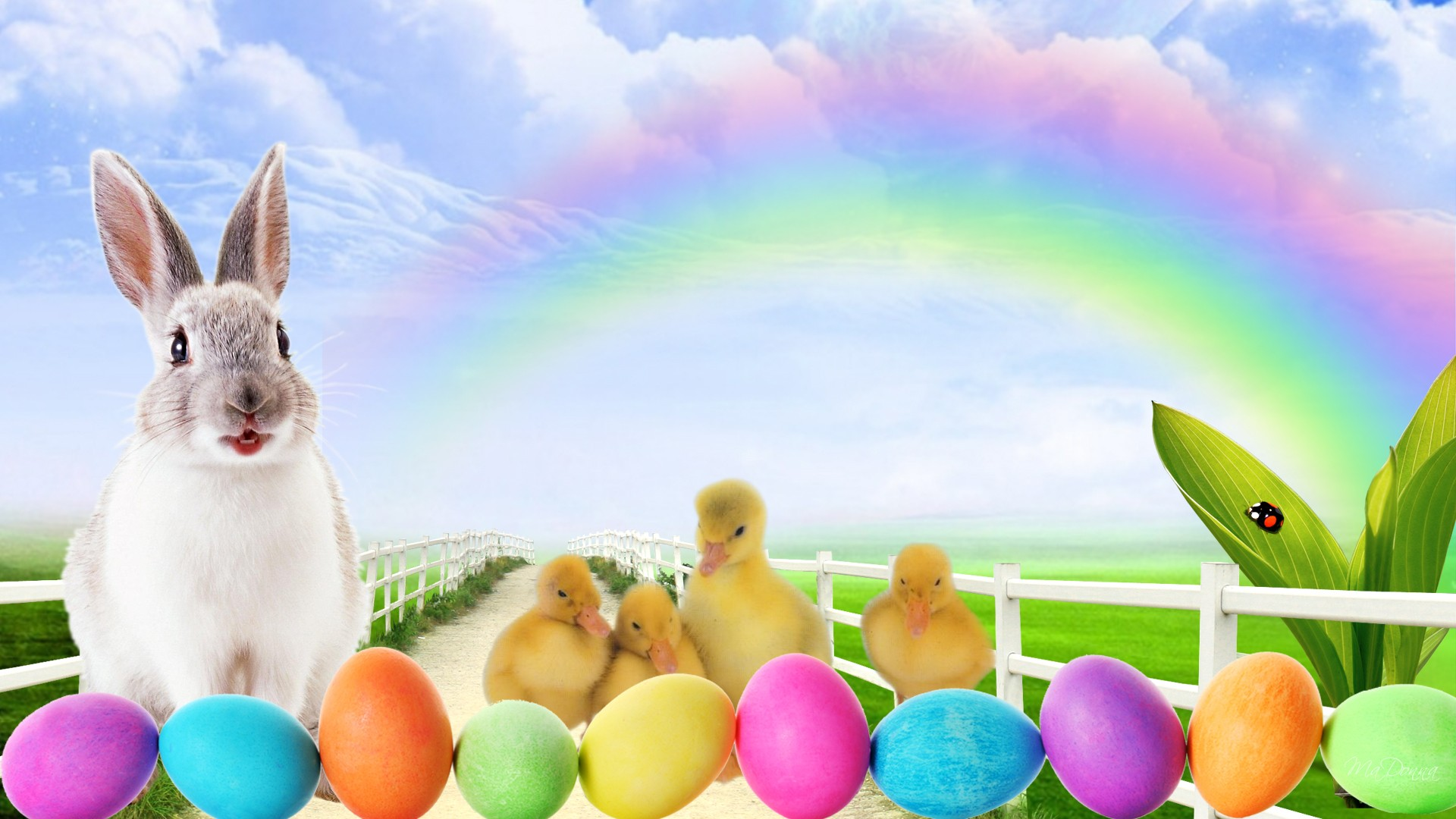 hd wallpaper easter bunny lane clouds colored   Background 1920x1080