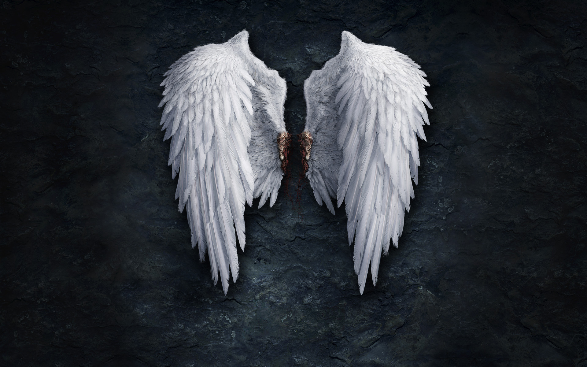 49 Angel Desktop Wallpaper Free On Wallpapersafari