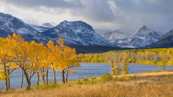 autumn season world glacier national park foliage 1920x1080 wallpaper 600x337