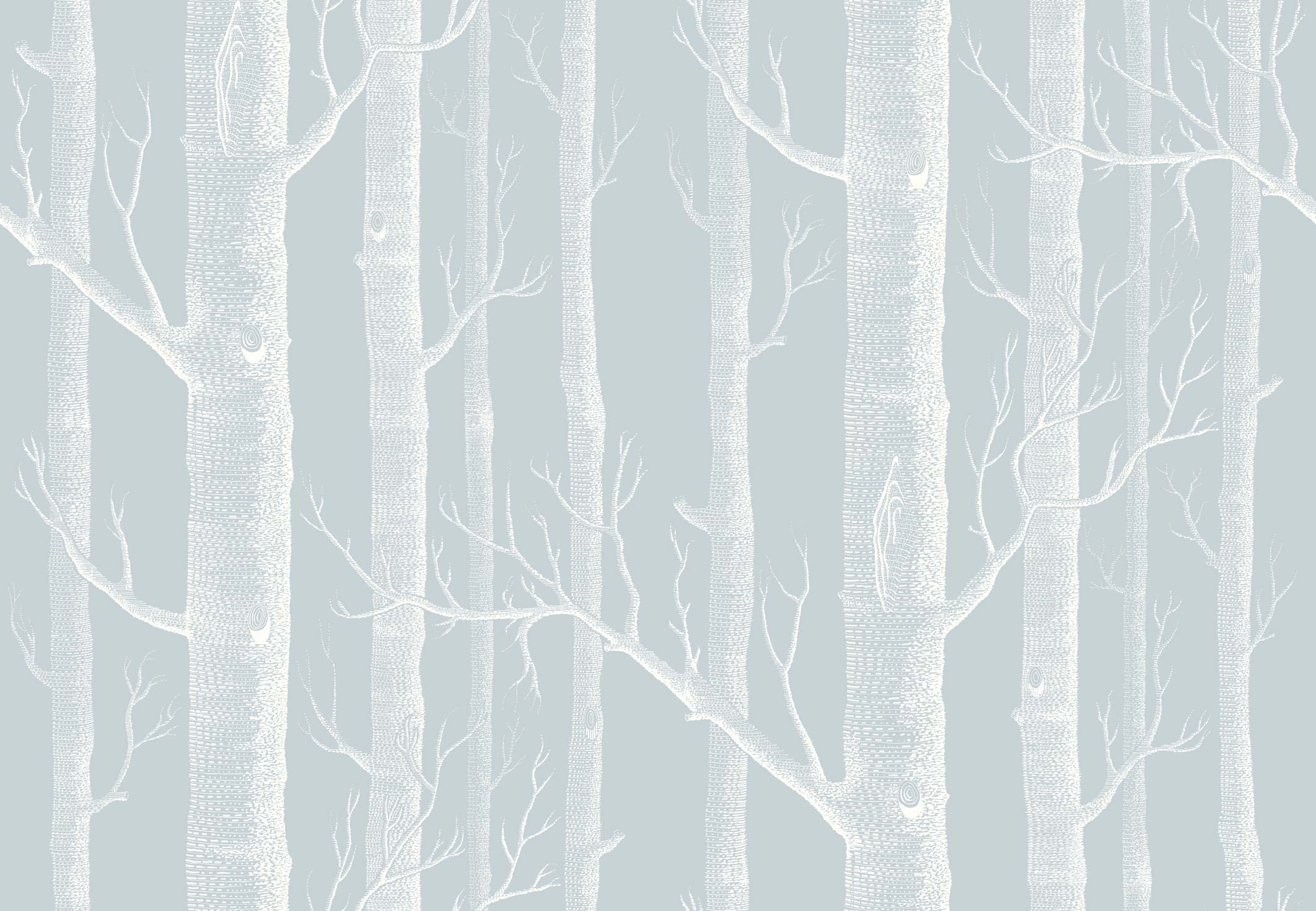 Woods 1035022   Whimsical   Cole Son 2124x1471