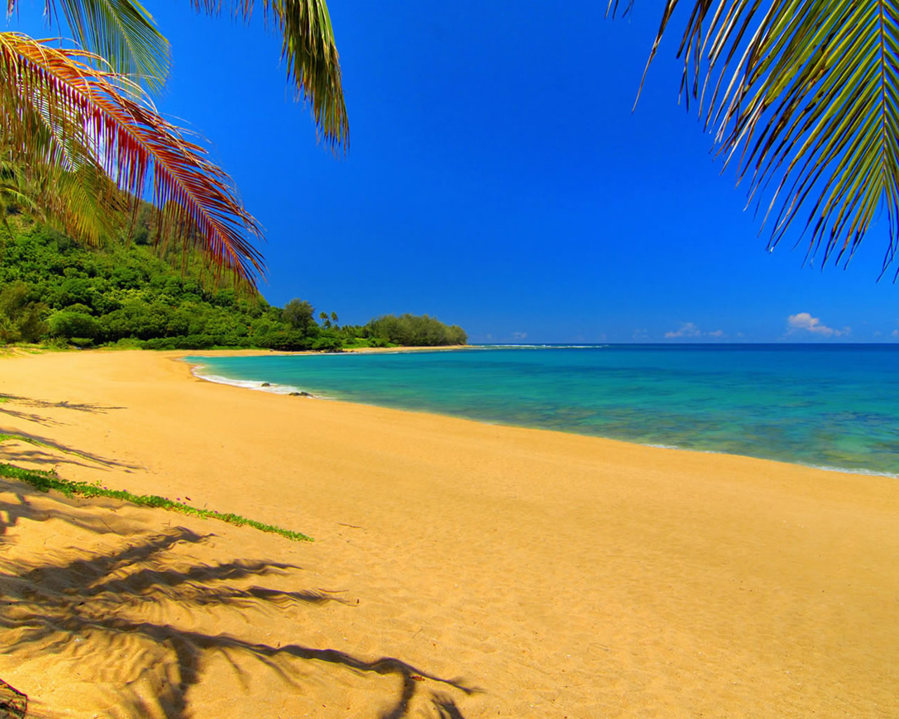 summer beach scenes wallpaper With Resolutions 12801024 Pixel 1280x1024