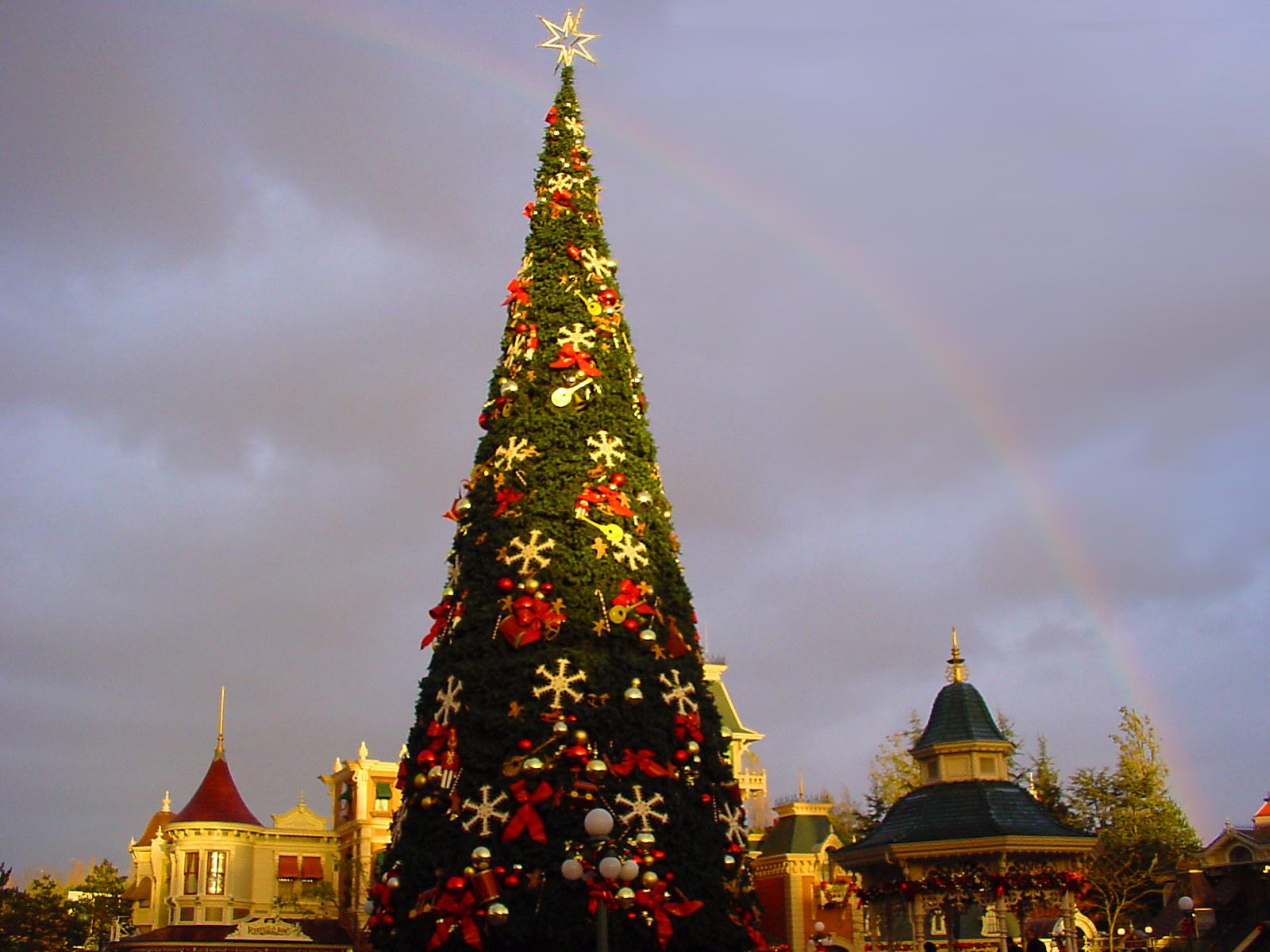 La imagen Disneyland rbol wallpapers and stock photos 1600x1200
