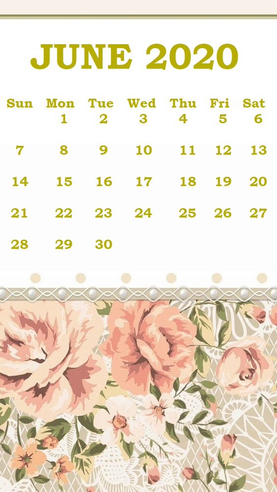Monthly 2020 iPhone Calendar Wallpaper 564x1002