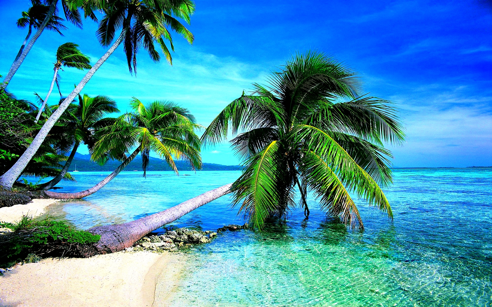 Tropical Beach Hd Image Wallpapers 1920x1200