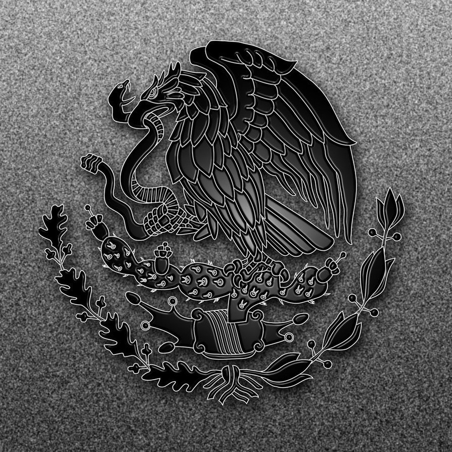 Top Mexican Flag HD Wallpapers   Clip Art Library 894x894