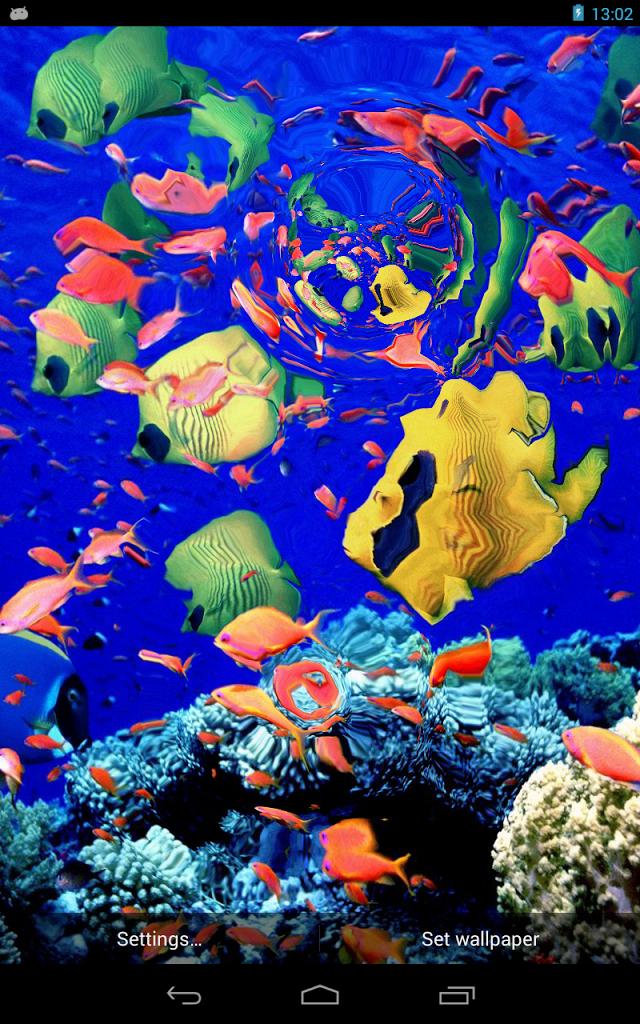 Live Fish Aquarium Wallpaper - WallpaperSafari