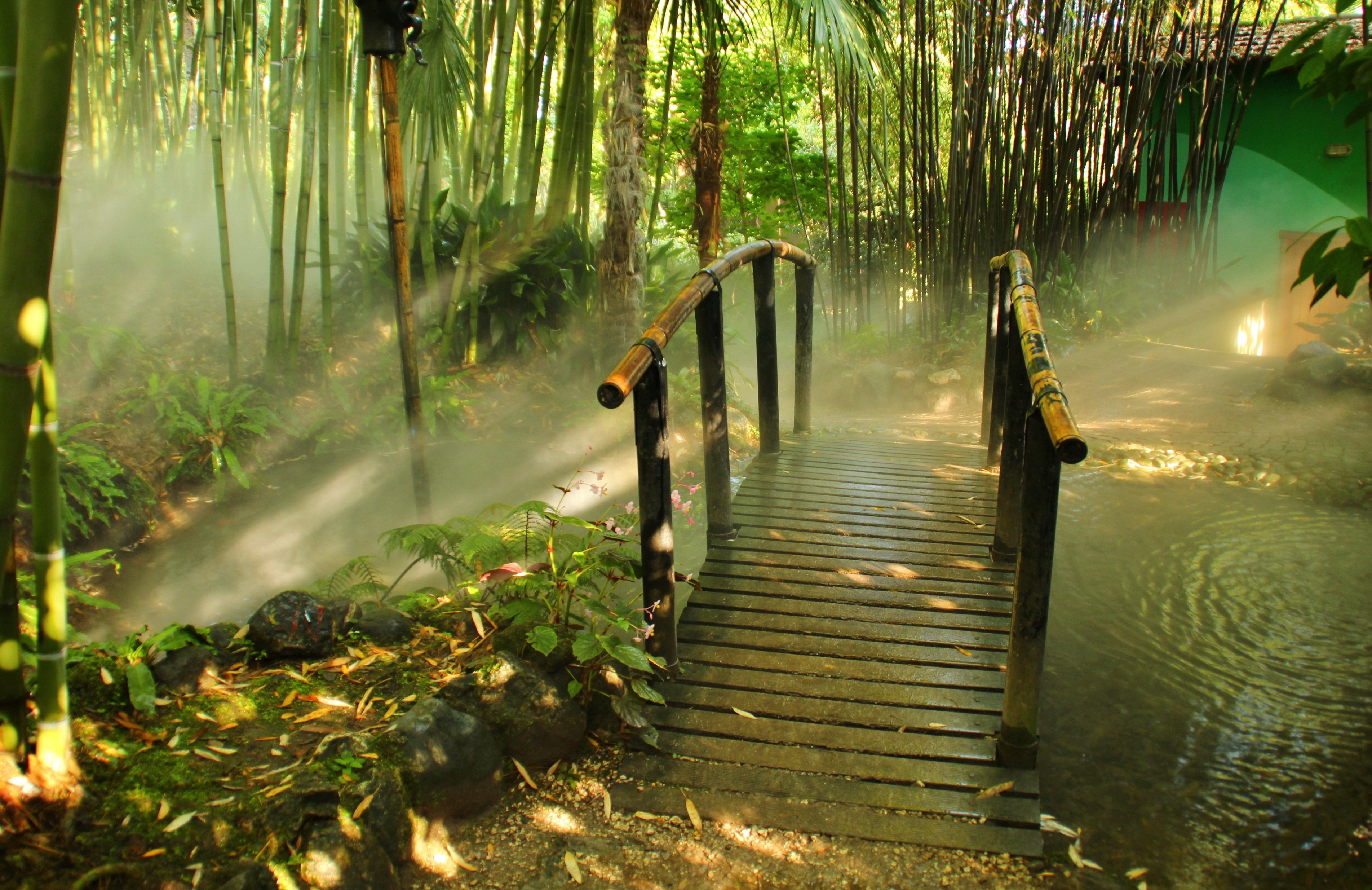 HD Bamboo Wallpapers 3806x2468