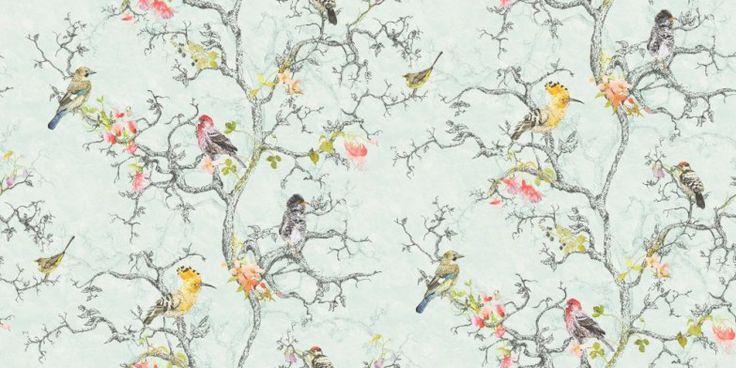 Wallpaper Designs With Birds Wallpapersafari