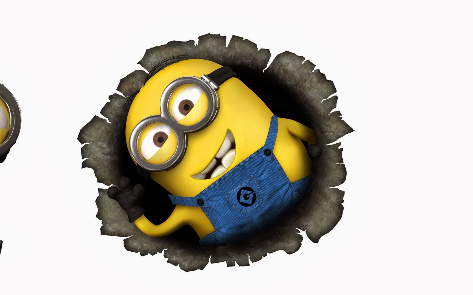 Minion Wallpapers HD   Beautiful wallpapers collection 2014 1600x1000