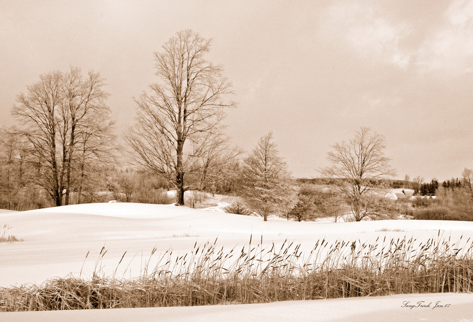 Winter scene Wallpapers Images and nature wallpaper Winter scene 1800x1229