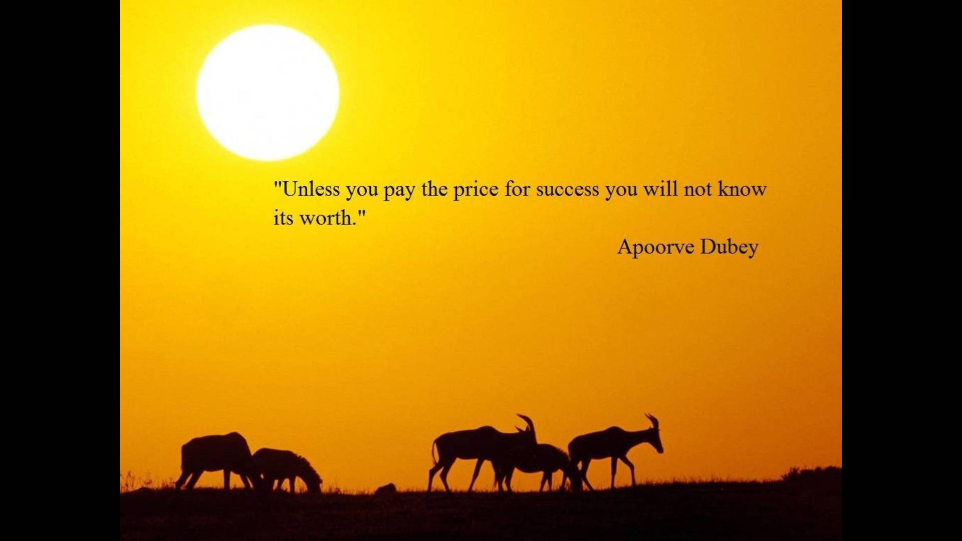 quotes about success wallpaper - photo #18