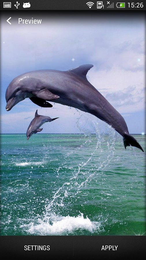 Dolphin Live Wallpaper   Android Apps and Tests   AndroidPIT 506x900