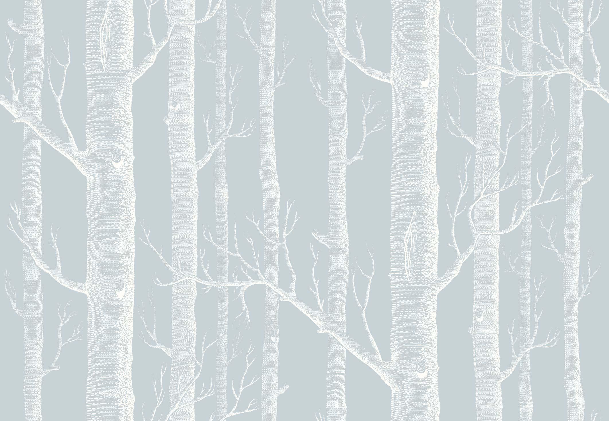 Woods Wallpaper Blue 2124x1471