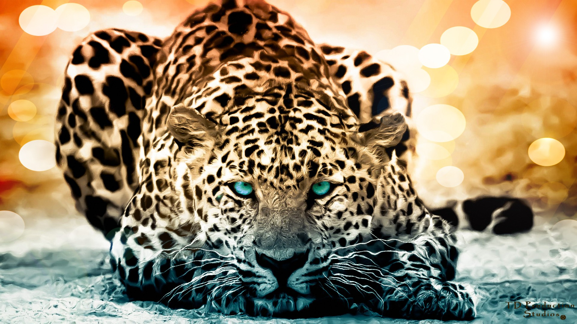 159 Jaguar HD Wallpapers Backgrounds 1920x1080
