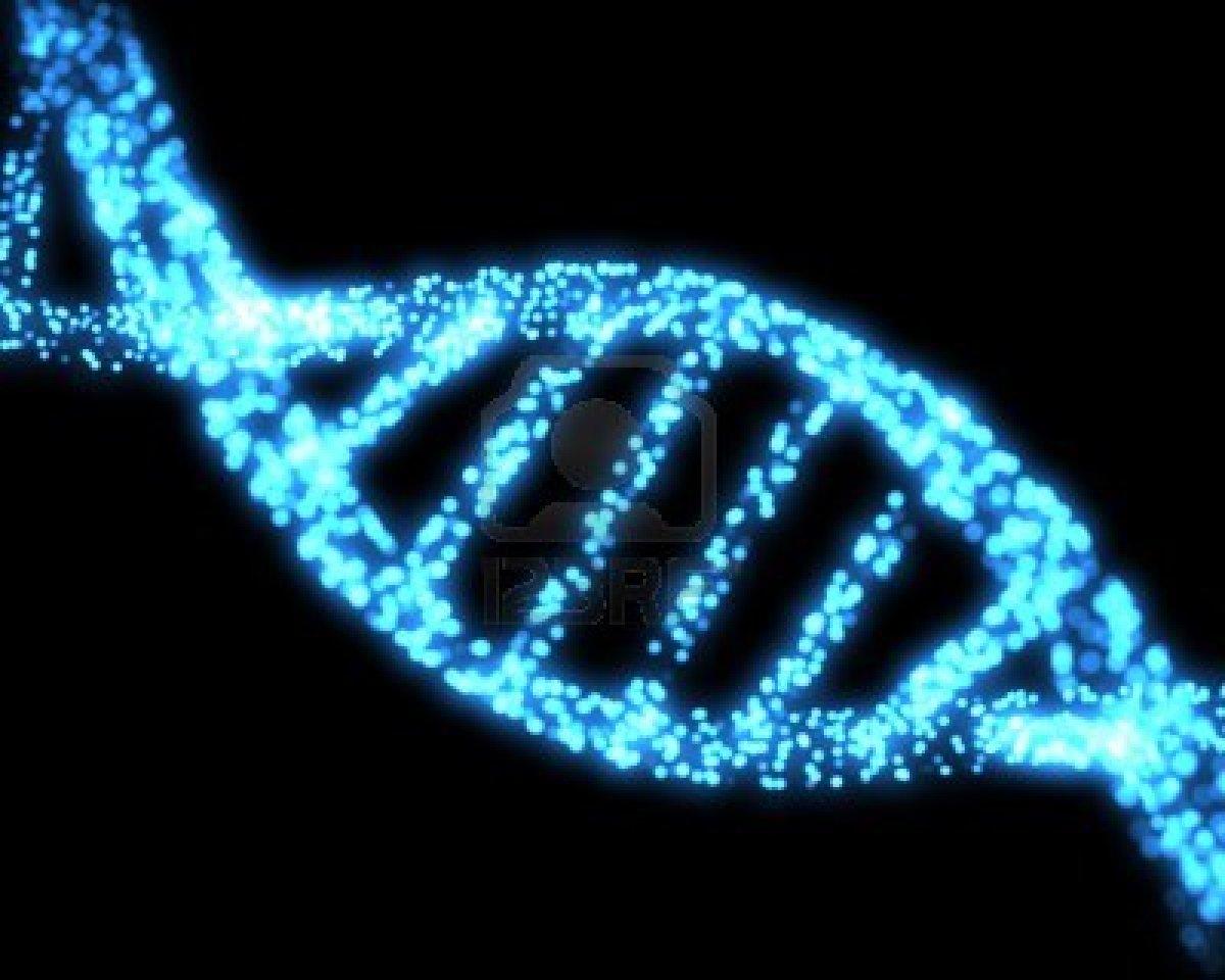 Filognese e Ontognese   Viver e Evoluir 1200x960