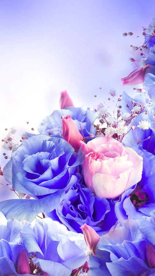 Flowers Live Wallpaper   Android Apps on Google Play 506x900