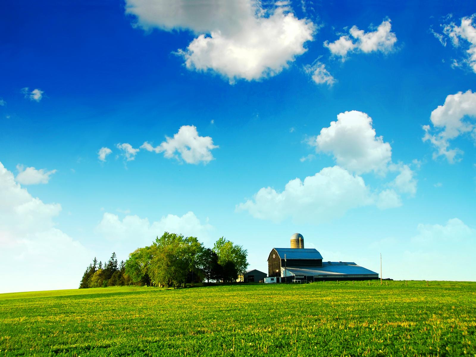 Farmland Blue Skies Bliss wallpaper Reforming Wall St and Republican 1600x1200