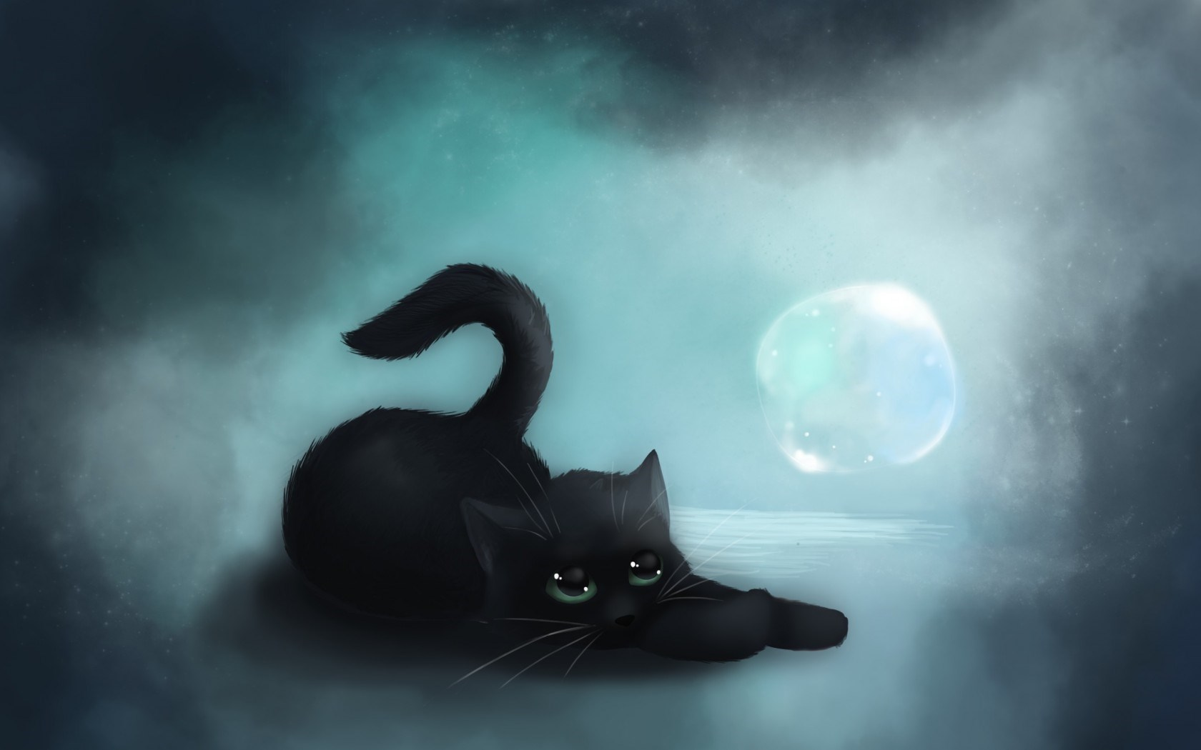 Black Cat In Moon Wallpaper Picture 12958 Wallpaper High Resolution 1680x1050