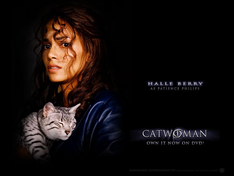 Catwomanhalleberrywallpaper 800x600