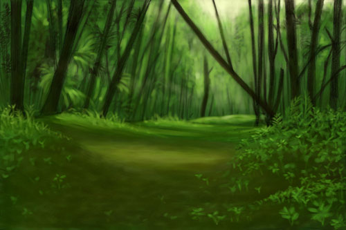 Beautiful Forest Picture Fresher Jobs 500x333