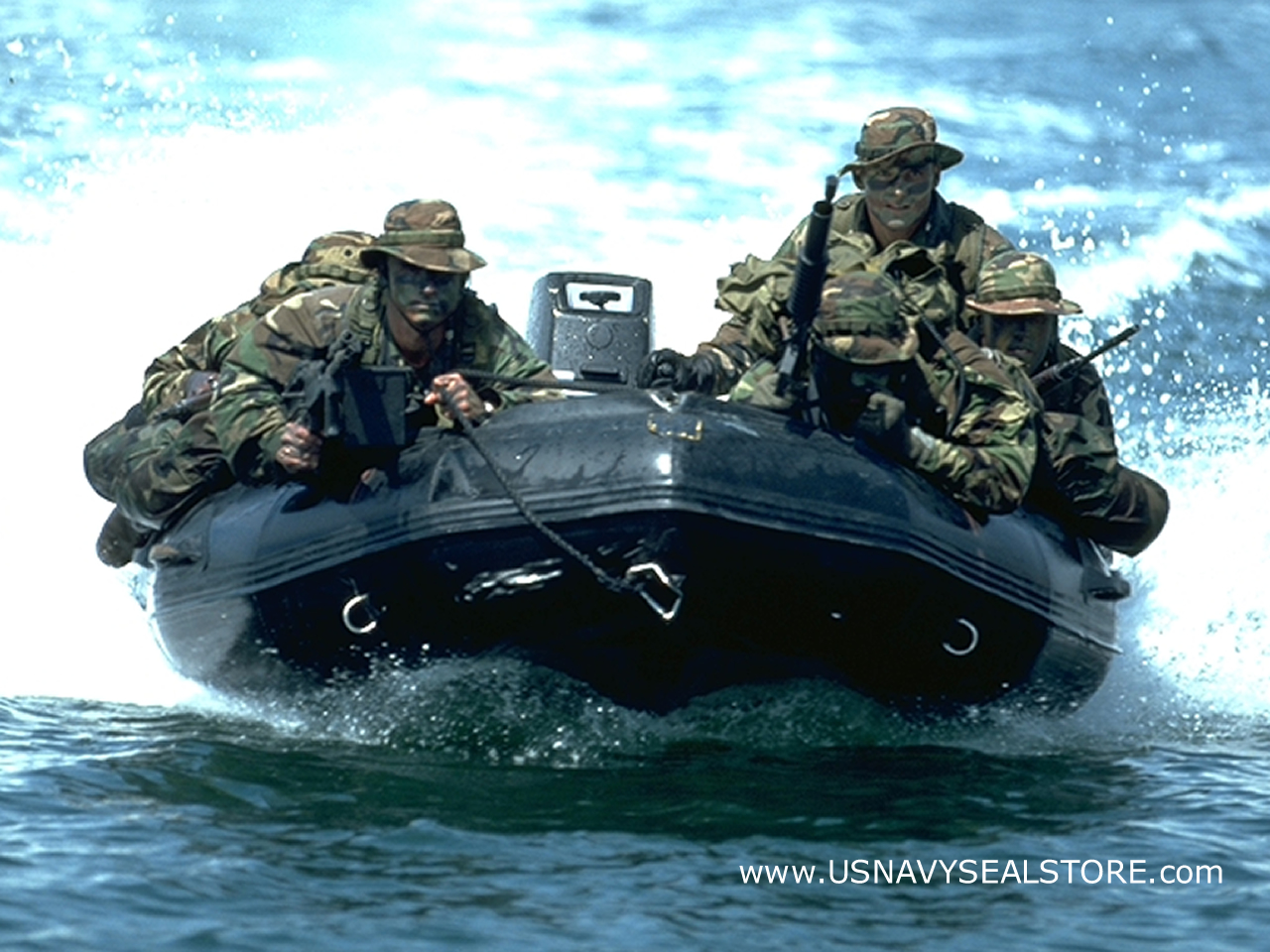 are viewing seals hd wallpaper color palette tags seals category army 1280x960
