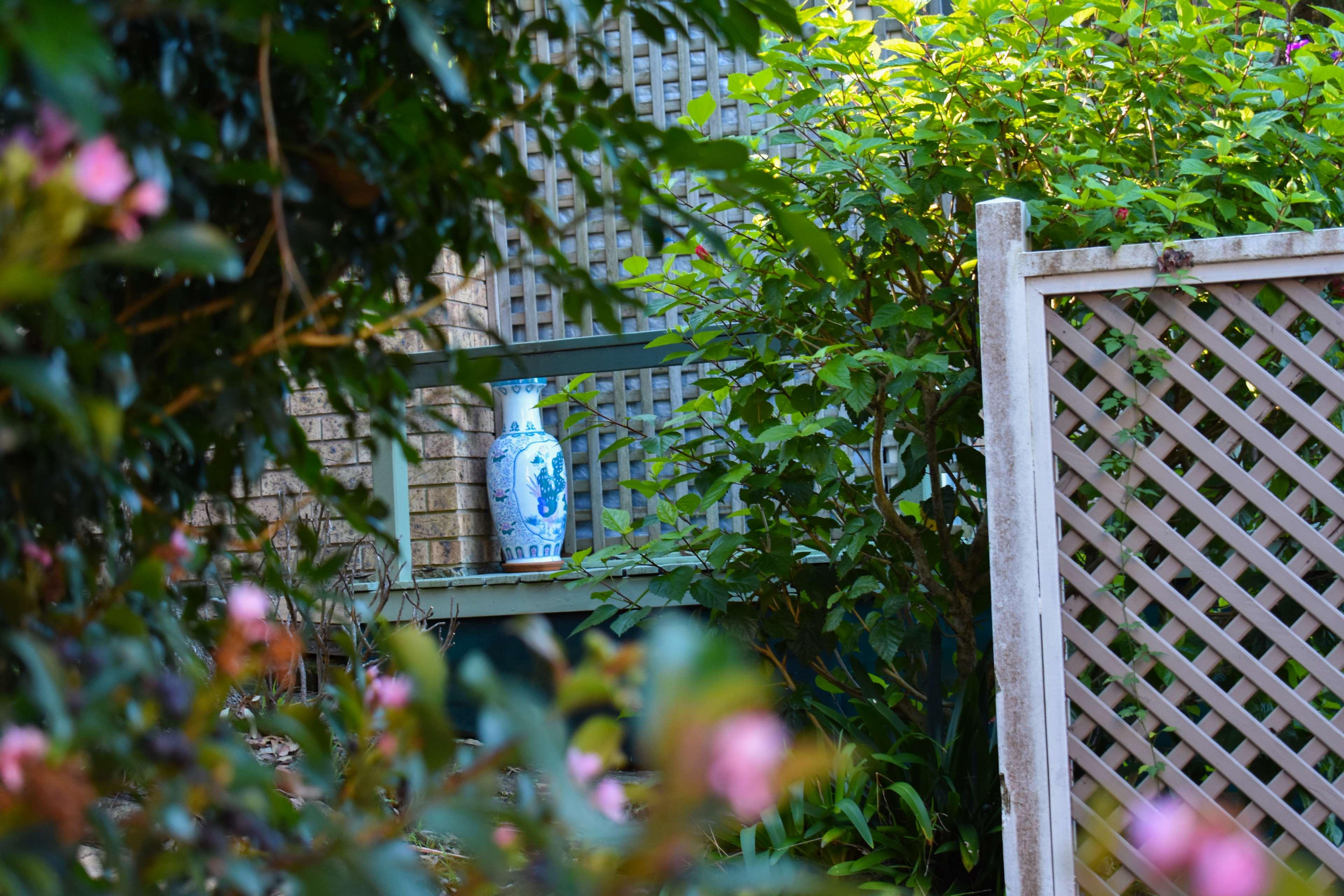 535730 background blur deck flower pot flower pots nature 3840x2560
