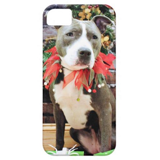 Christmas   Pitbull   Charm iPhone 5 Cover Zazzle 512x512