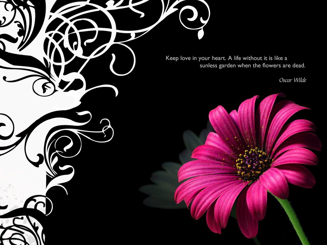 Wallpapers Screensavers at American Greetings 1302x977