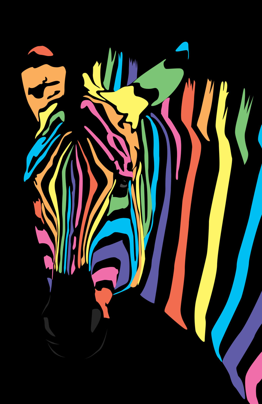 Rainbow zebra by jasminebrione digital art vector animals yes i know 900x1391