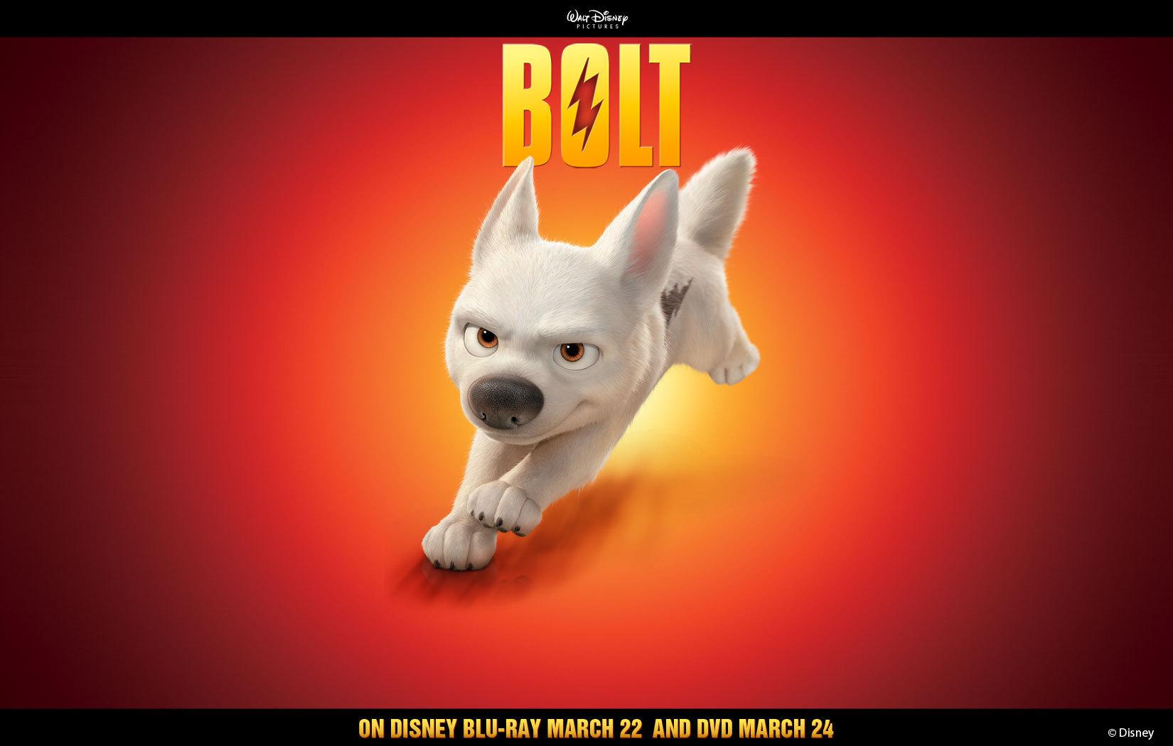 Disneys Bolt images Bolt Solo Wallpaper wallpaper photos 5566700 1650x1050