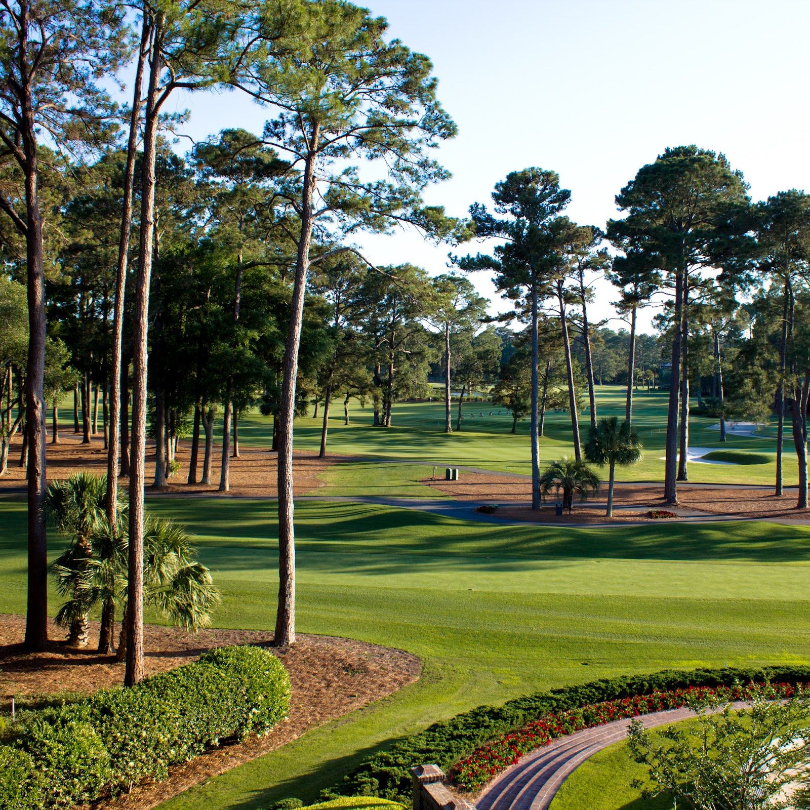 SeaPines Golf Course in Hilton Head South Carolina 1600x1600