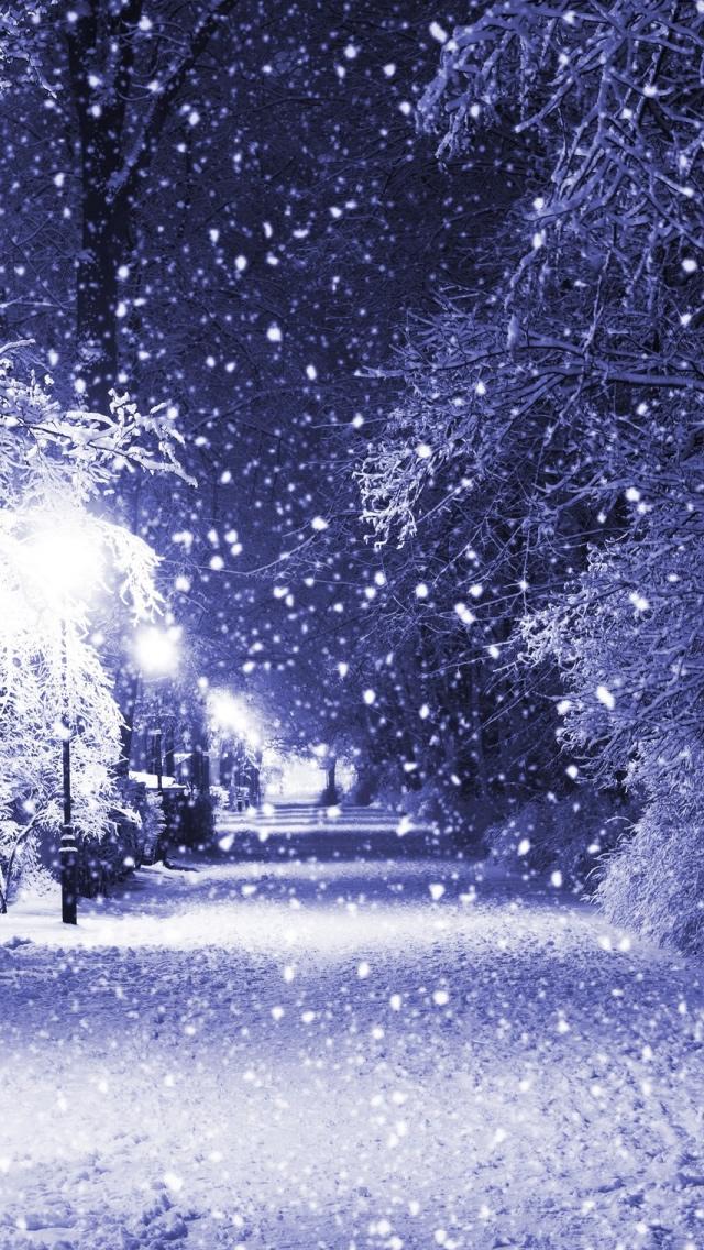 Winter Night IPhone 5s Wallpaper Download IPhone Wallpapers IPad 640x1136