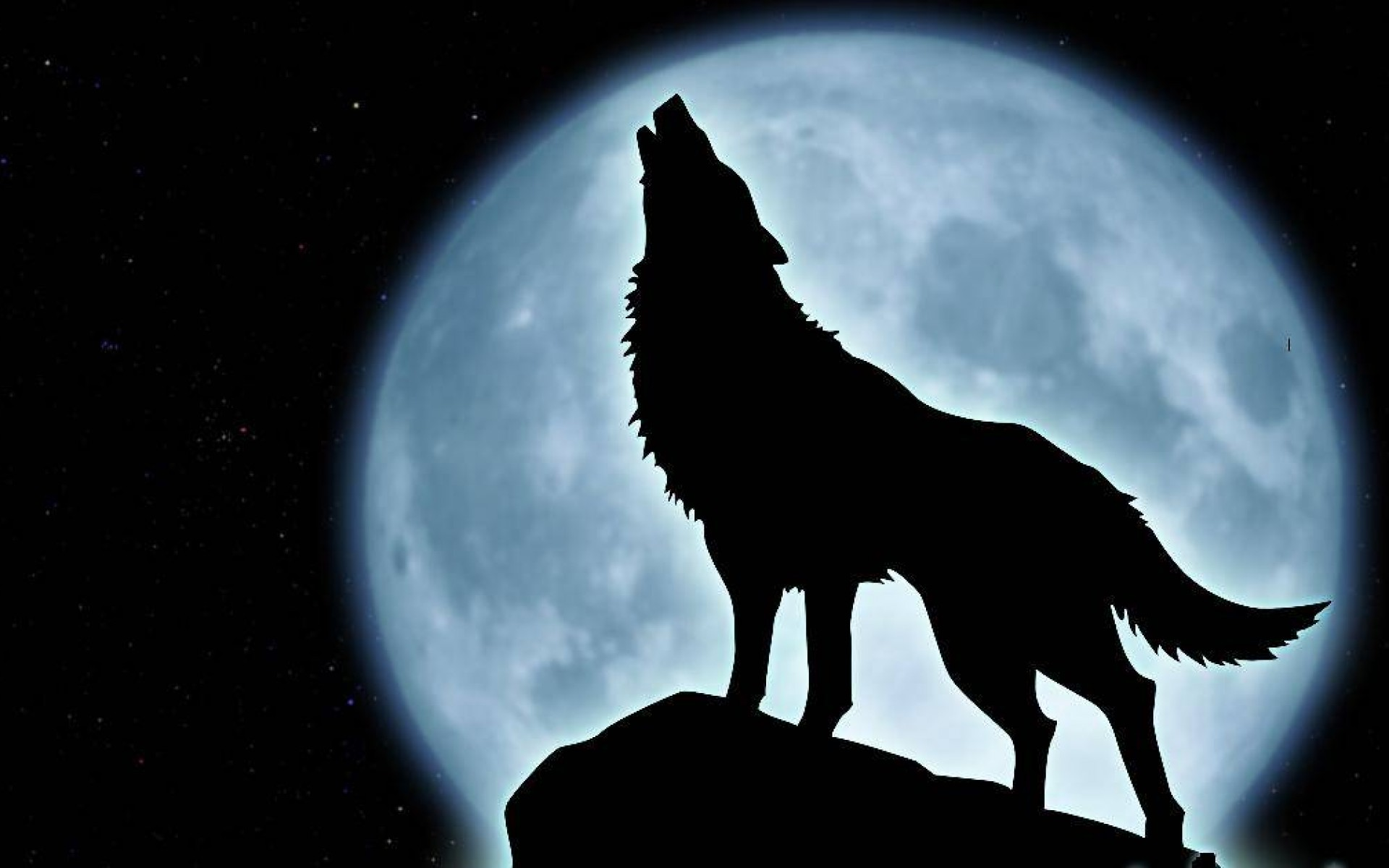 Howling Wolf Wallpaper 10927 Hd Wallpapers in Animals   Imagescicom 1920x1200