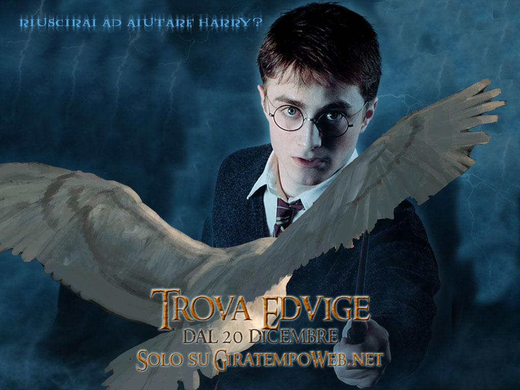 Harry Potter Wallpapers Download Harry Potter Photos Pictures 1024x768