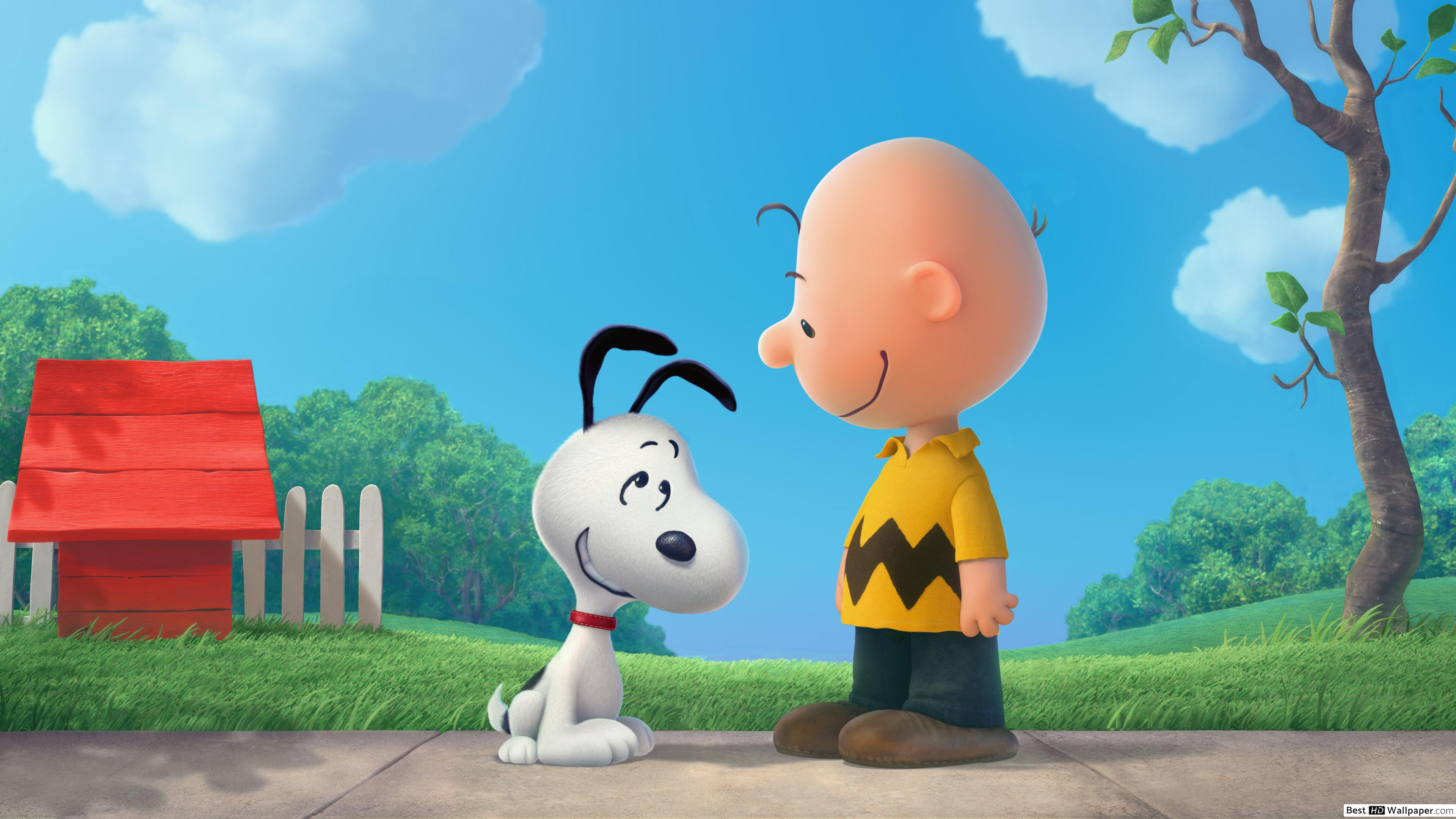 Snoopy and Charlie Brown HD wallpaper download 3840x2160