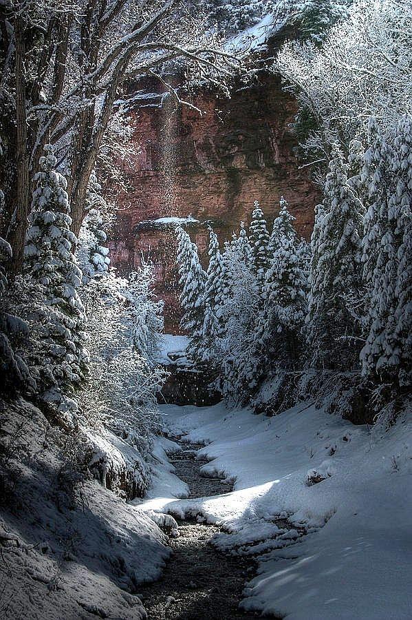 Winter Creek Let It Snow Let It Snow Let It Snow 599x900